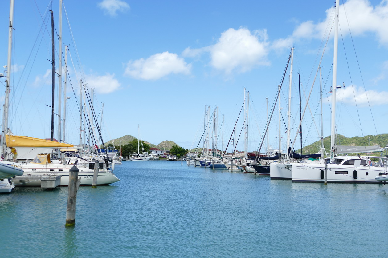 45. Antigua, la marina de Jolly harbour