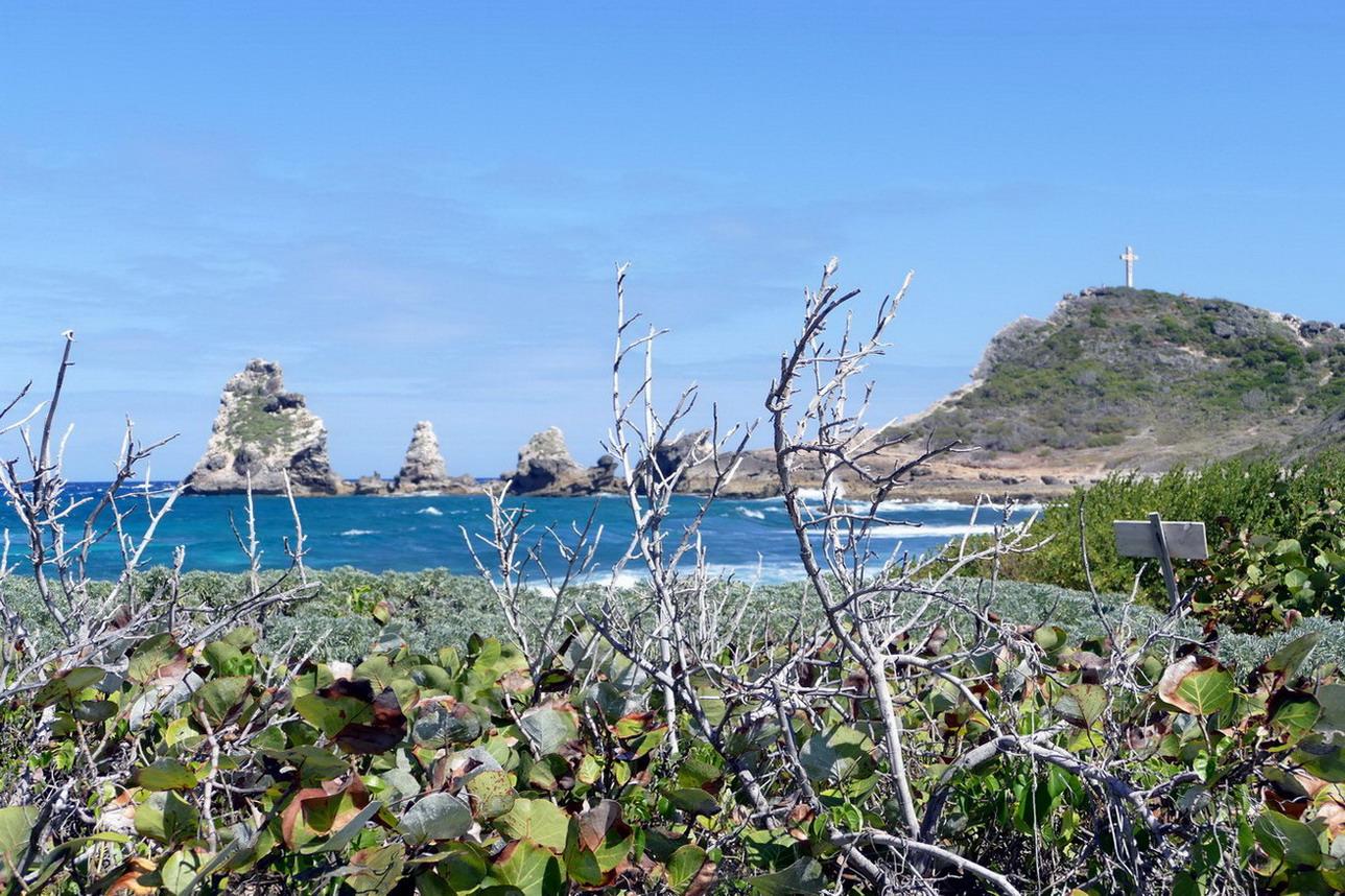 45. Guadeloupe, la Pointe des châteaux