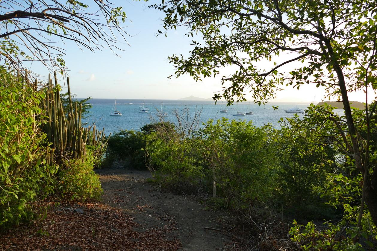45. Le mouillage des Tobago cays, vu de l'îlet Baradal