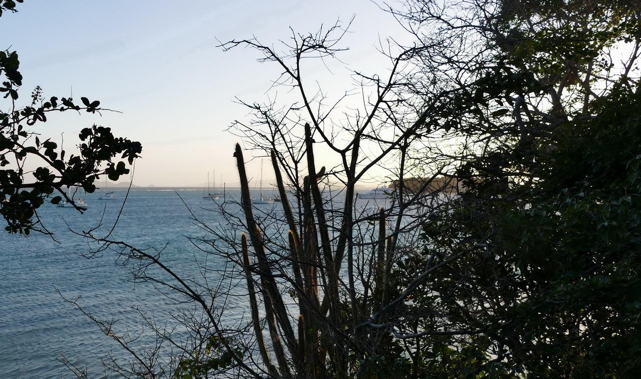 46. Le mouillage des Tobago cays, vu de l'îlet Baradal