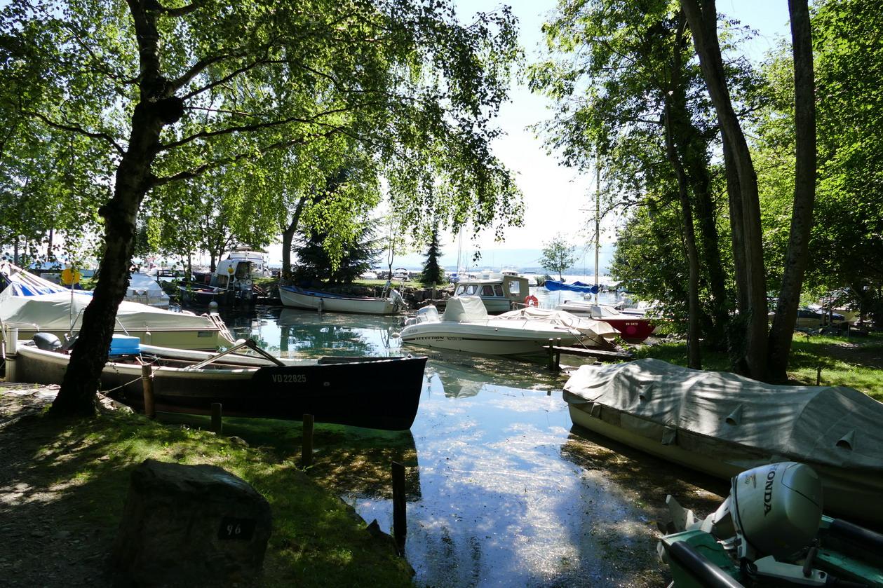 47. Lac Léman - Rolle et le vignoble suisse