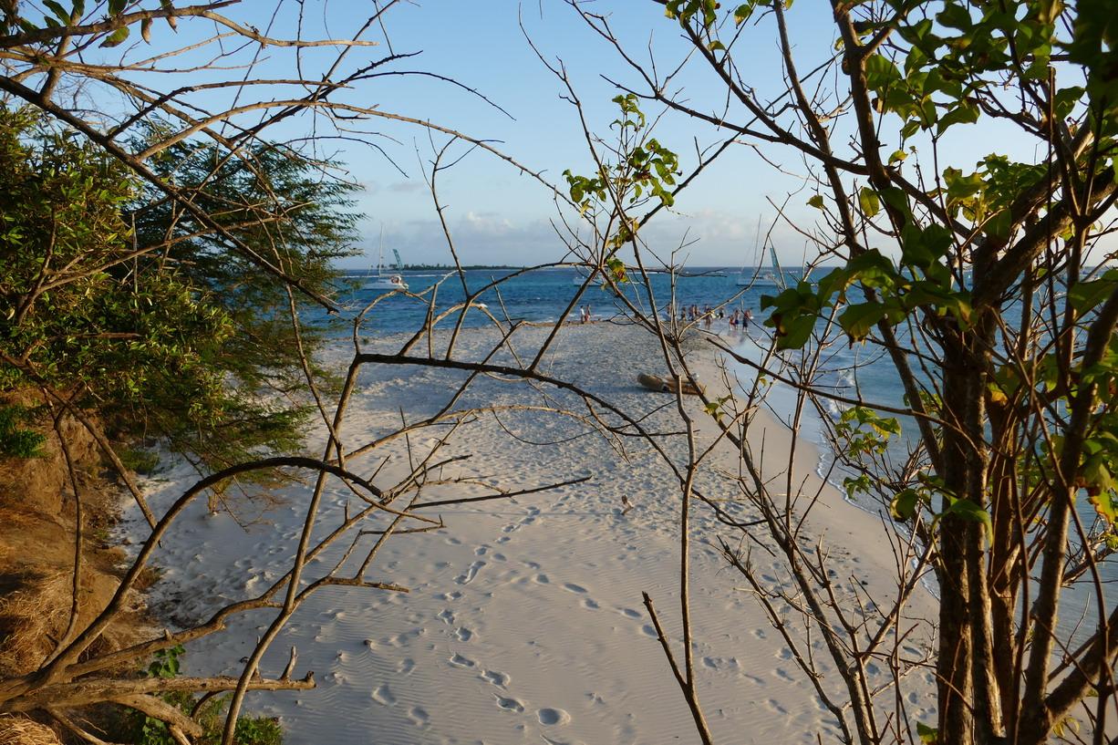 47. Les Tobago cays, la petite plage de l'îlet Baradal
