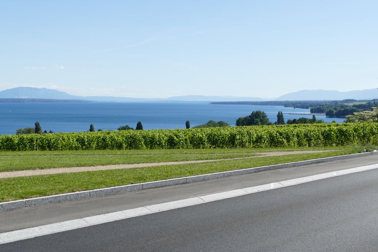 48. Lac Léman - Rolle et le vignoble suisse
