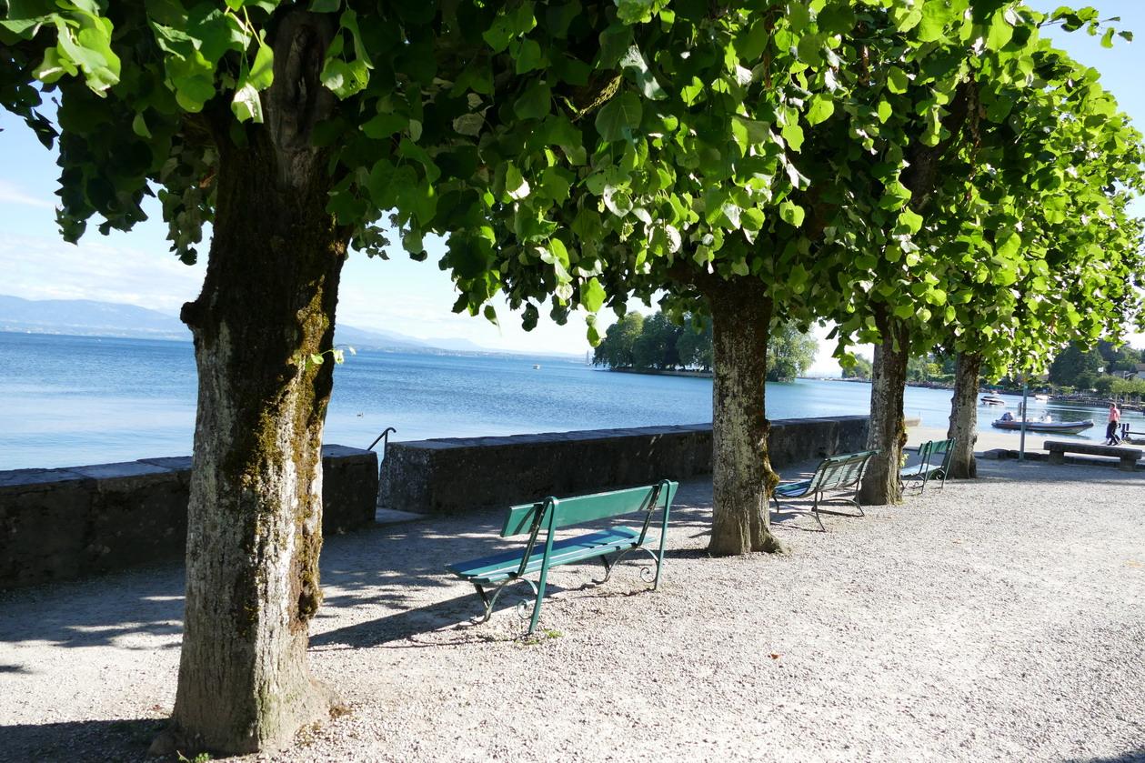 52. Lac Léman - Rolle et le vignoble suisse