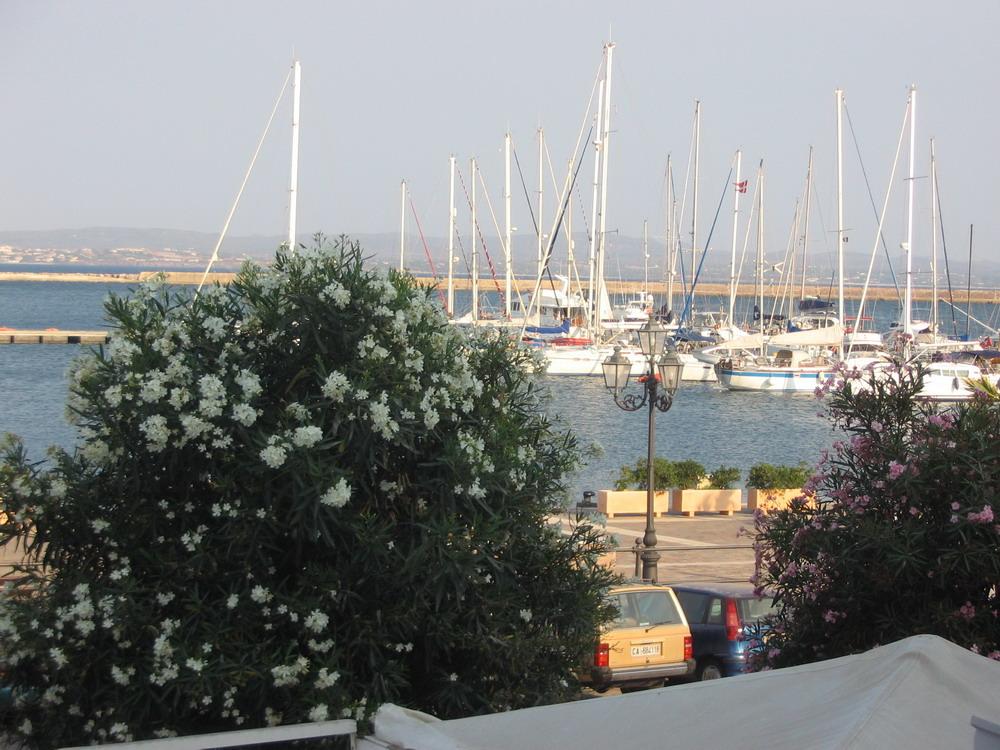 6. Marina de Carloforte
